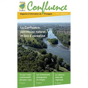 confluence2